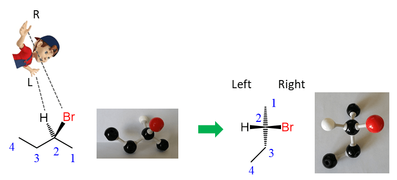 Fischer Projections with Practice Problems - Chemistry Steps